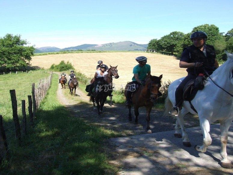 I paesaggi della Navarra a cavallo