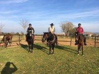 Motril农场的骑马课程