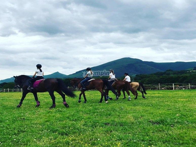 Passione per il cavallo ad Arizcun
