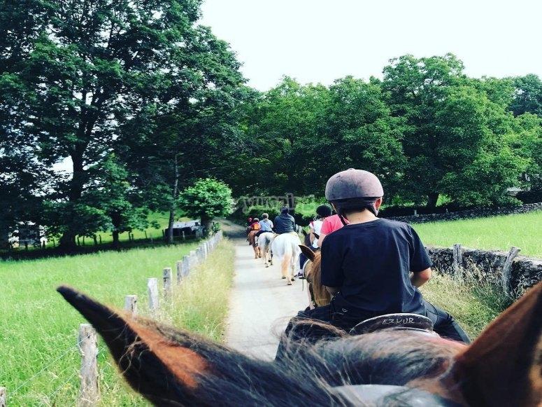 Passeggiata a cavallo guidata attraverso la valle del Baztan