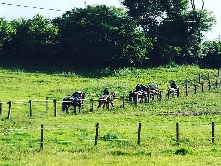 Visita della valle di Baztan a cavallo