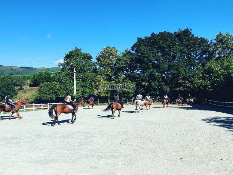 Imparare a cavalcare un cavallo nel centro ippico