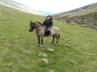 Valle della prateria Baztan a cavallo