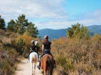 Equitazione attraverso la Sierra de Guadarrama 2h