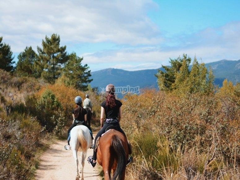 Sierra de Guadarrama a caballo