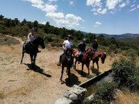 Paseo a caballo por Sierra de Guadarrama