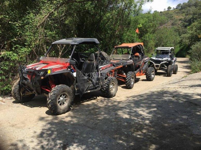 Travesías en buggy en Sierra de las Nieves