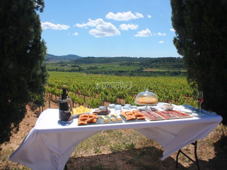 红酒旅游指南之后的野餐