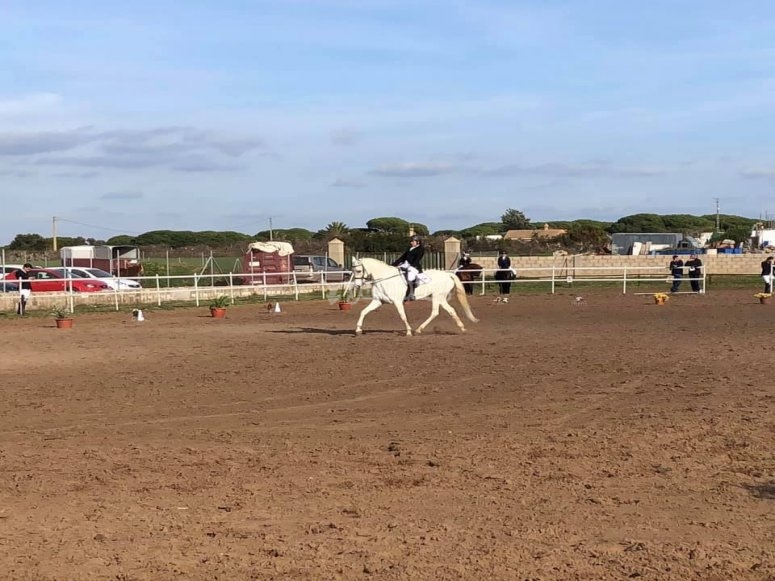 Learning to ride a horse in Chiclana