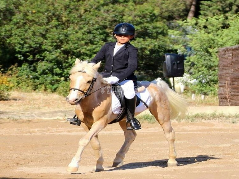 Horse riding class with pony in Chiclana