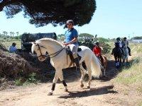 Bono 10 clases iniciación a la equitación Chiclana
