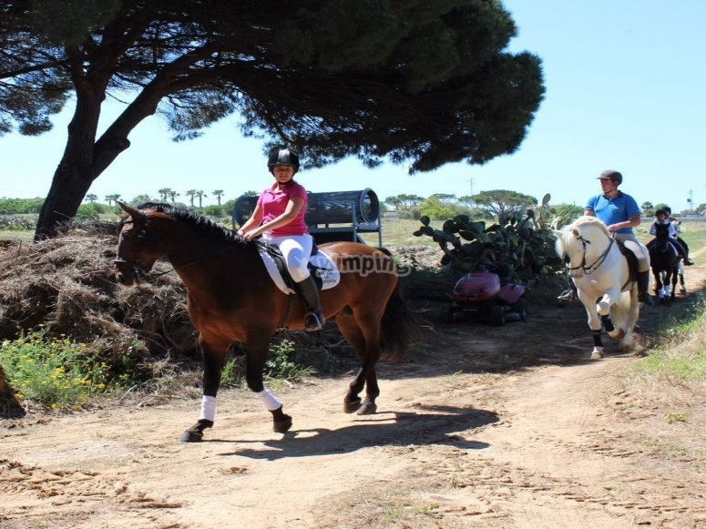 Galloping along the Costa de La Luz