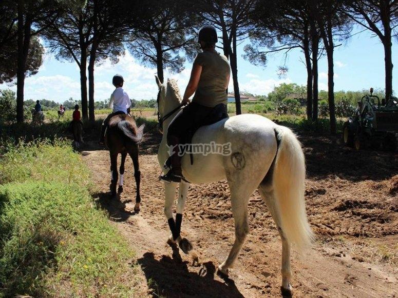 Equestrian ride father and son