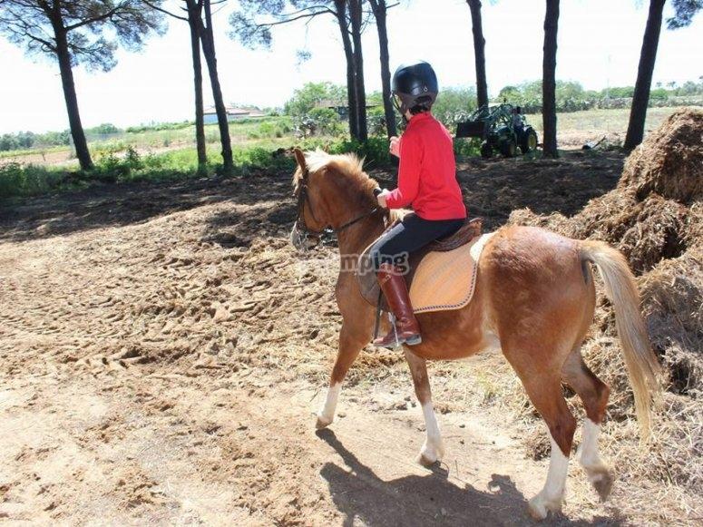 在奇克拉纳(Chiclana)海滩上骑小马