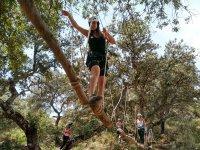 Circuito tra gli alberi