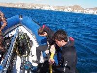 Preparando la inmersion desde el barco