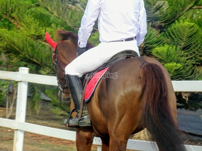 Horse riding through Telde