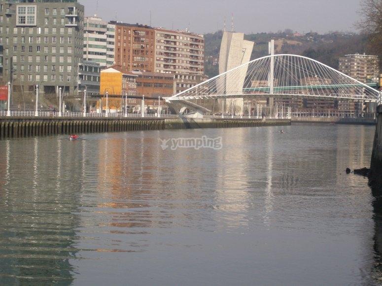 Margen derecha de la Ría de Bilbao vista desde la avioneta