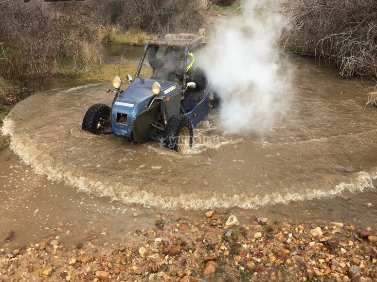 A dip between buggy companions