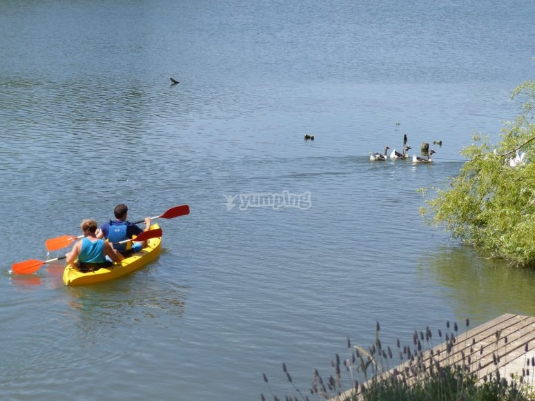 Ruta guiada en kayak en Briñas