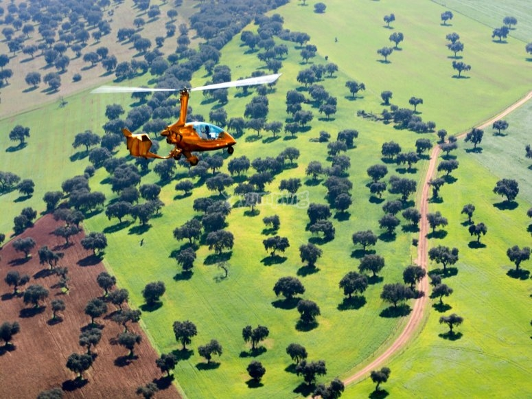 直升机在科尔多瓦上空飞行