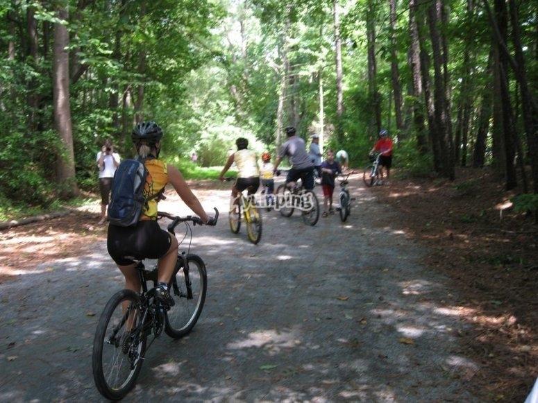 穿越Alava山区的山地自行车路线