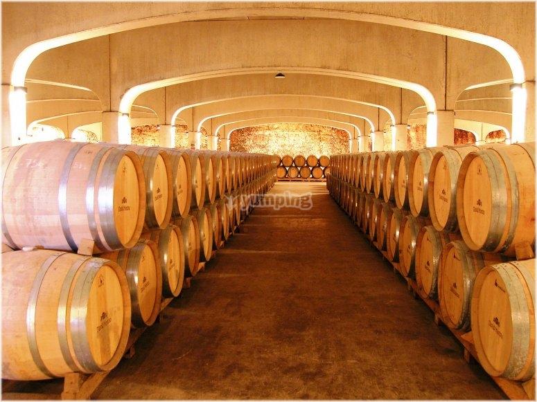 酒厂位于拉里奥哈省alavesa