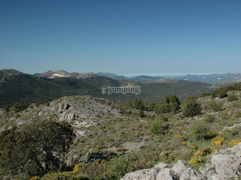 Entorno natural de Sierra de las Nieves