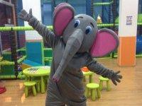 Nuestro elefante