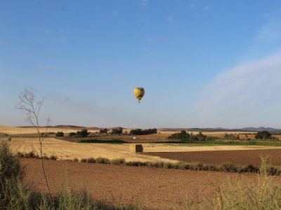 1-hour balloon ride for adults over Toledo