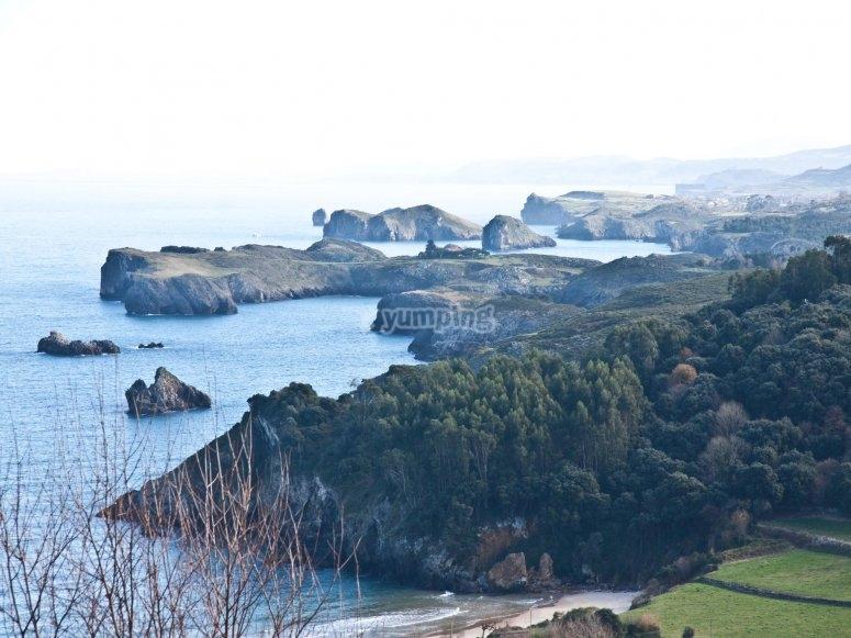Coast Asturian in ultralight