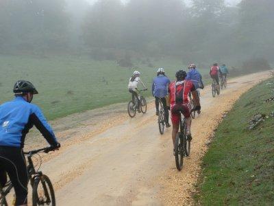 Ruta en bicicleta por Vía Verde El Ronquillo 3h