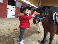 Cumpleaños infantil en centro hípico Burgo de Ebro