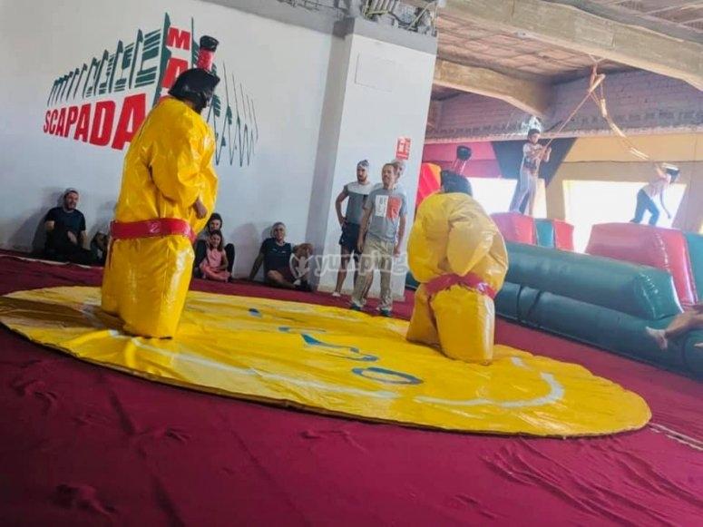 Lucha de sumos en tatami