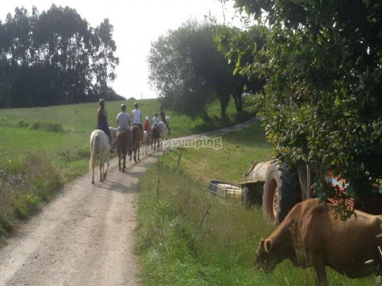 Horse riding tour in Santillana del Mar