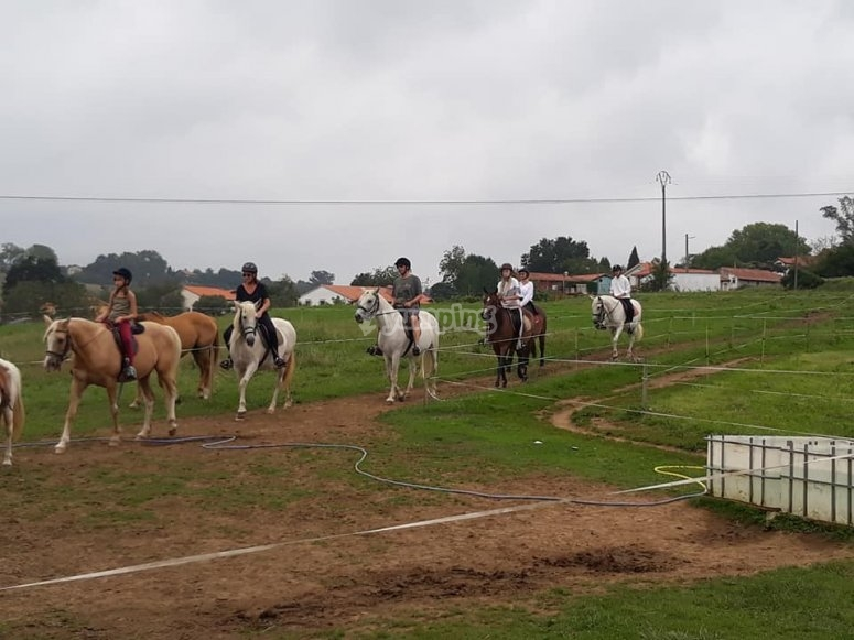 Horse riding tour in the fields of Santillana