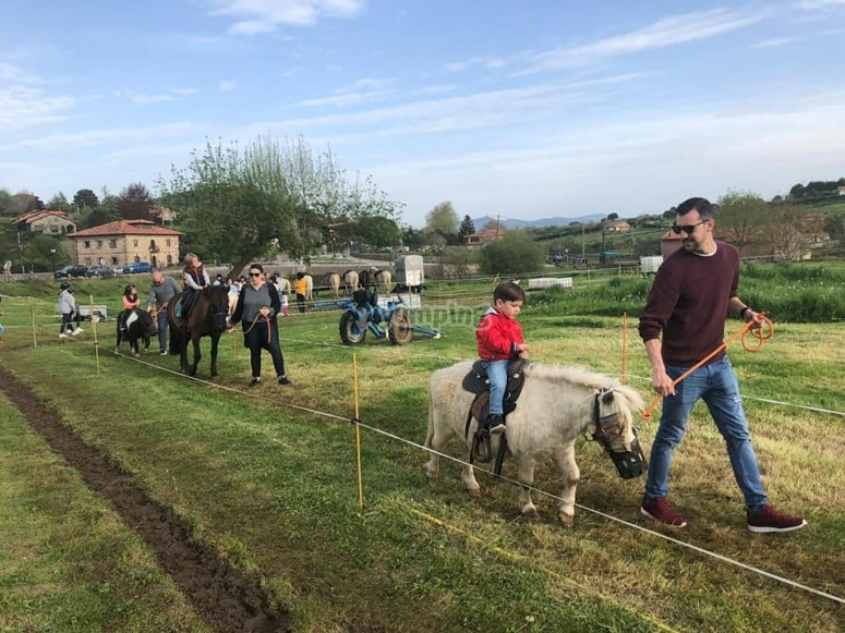 Guided pony ride for Children