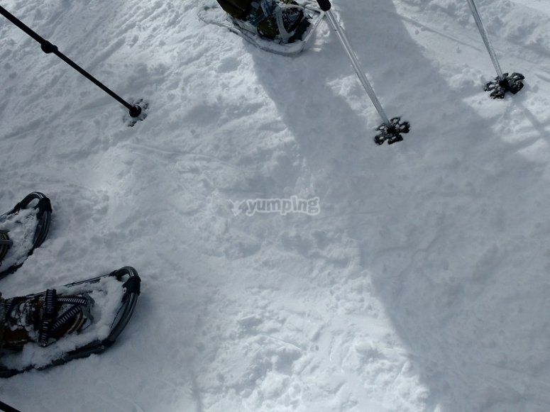 Excursión con raquetas de nieve Fuente Alta