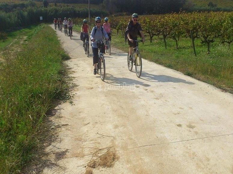 通过Penedés友好地骑自行车