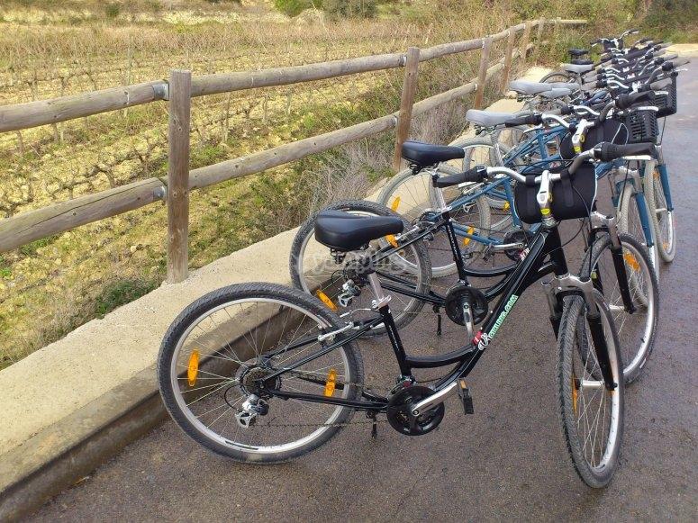 Lavern的小孩租用自行车