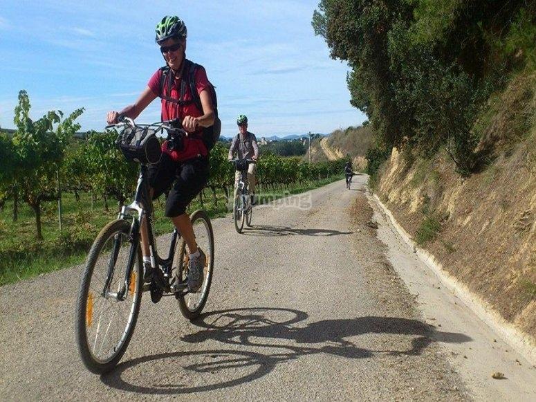 租自行车游览Penedés