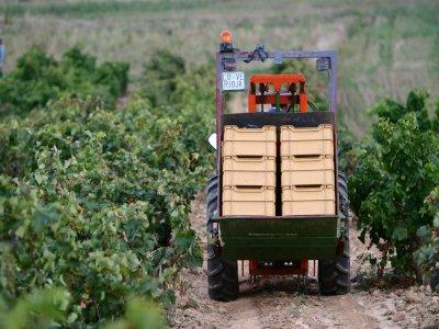 Love Rioja Enoturismo