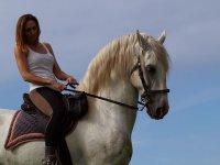 Goditi i cavalli