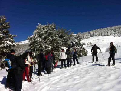 Turiactivo Raquetas de Nieve