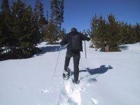 andando por la nieve