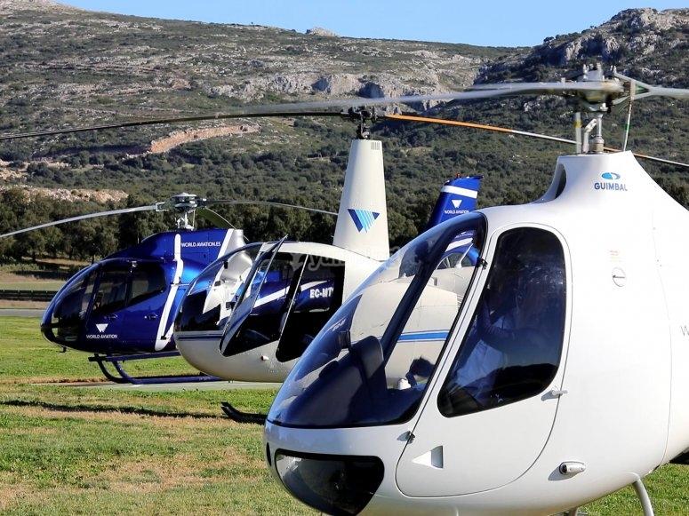 我们的直升飞机群