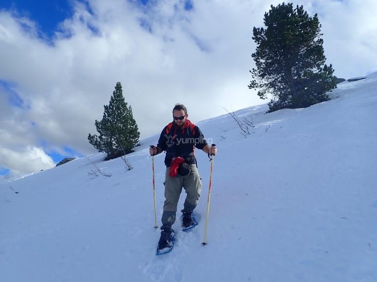 Experiencia de invierno con raquetas de nieve