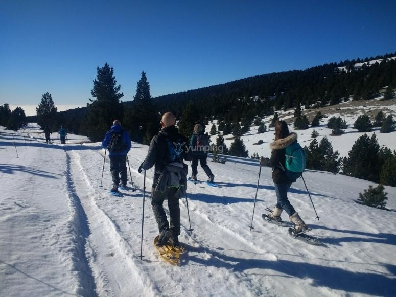 对滑雪运动的热爱又迈出了一步
