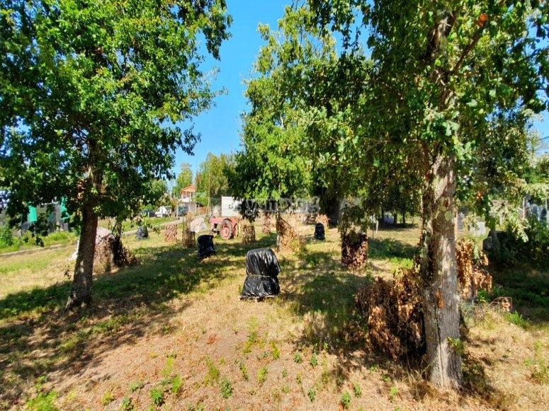 Circuito di paintball tra alberi