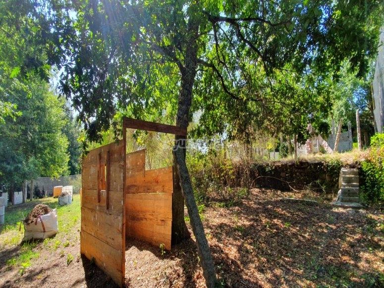 Tavole di legno in scenario naturale